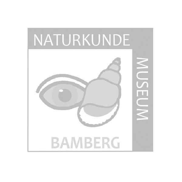 Naturkundemuseum Bamberg Logo